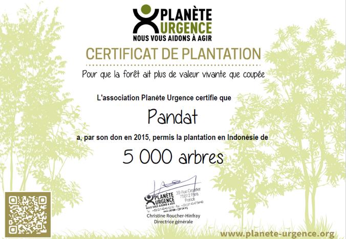 Pandat s'engage ! 5000 arbres plantés avec Planète Urgence #GOCOP21