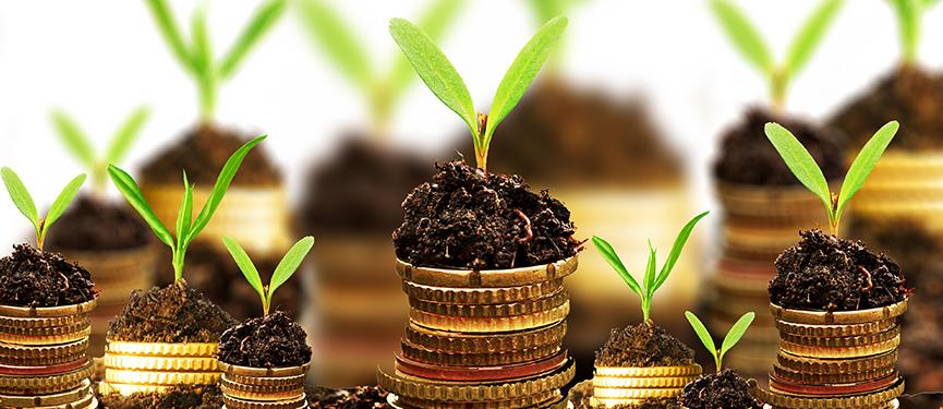 Pandat déploie son offre de financement et de services financiers via sa nouvelle plateforme digitale