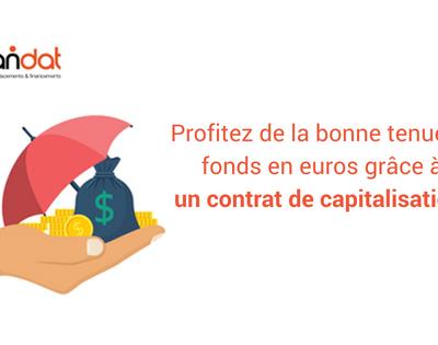 Profitez de la bonne tenue du fonds en euros grâce à un contrat de capitalisation !